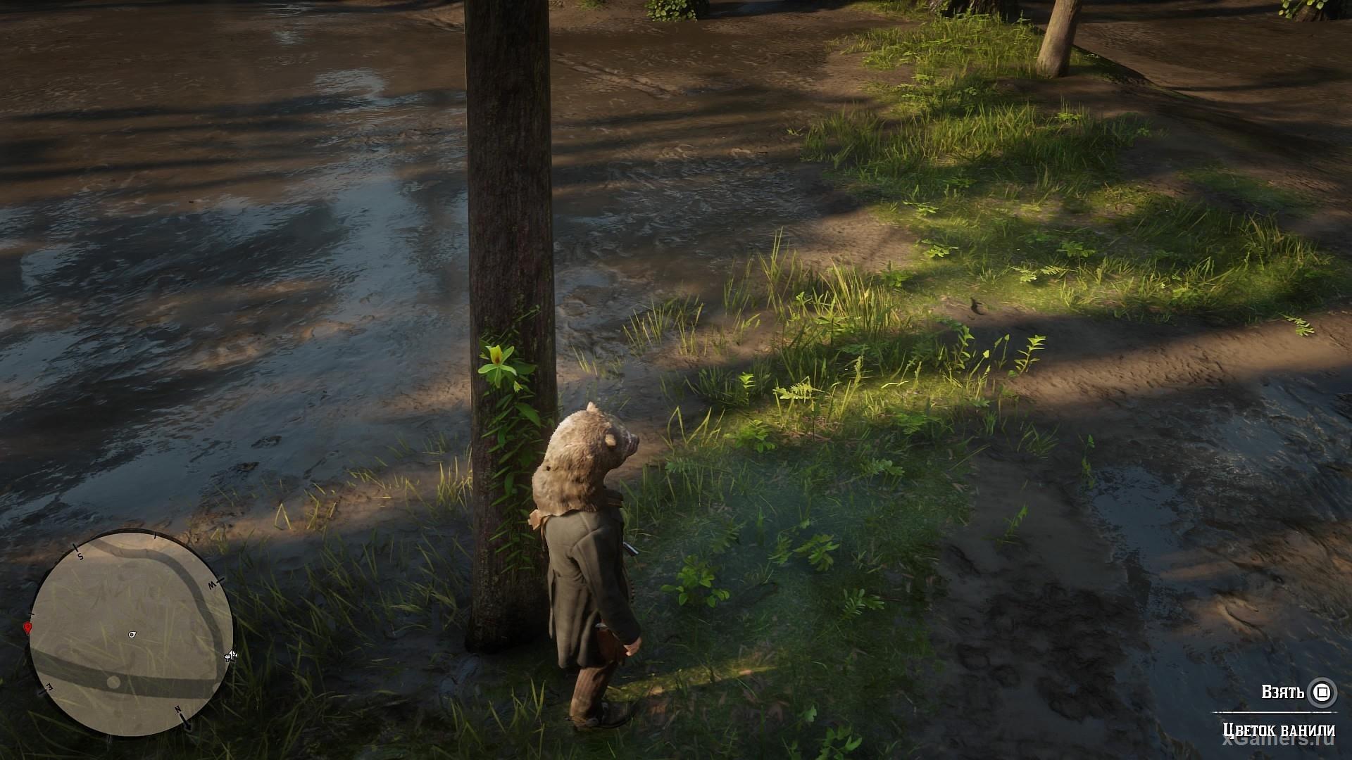 Red Dead Redemption 2 - полный Гайд растении