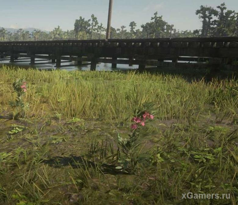 How to make poisoned arrows in the game RDR 2