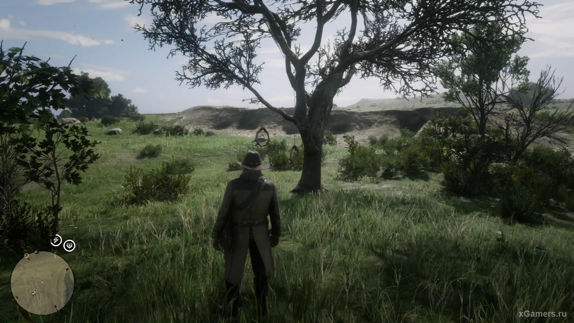 Девятый спокойно висит на ветки высохшего дерева вблизи от ранчо Эмеральд.