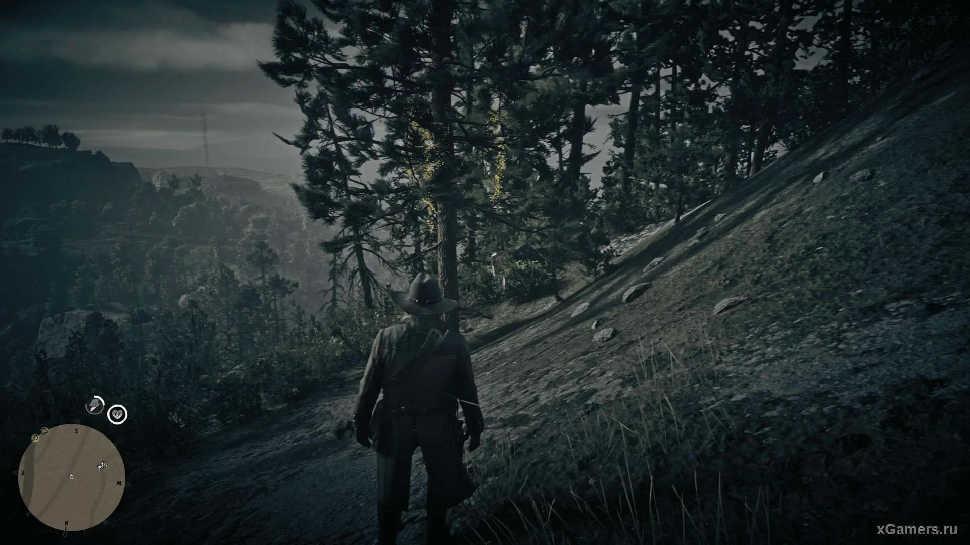 Двадцатый ловец находится около гор Гризли и лесом Камберледн