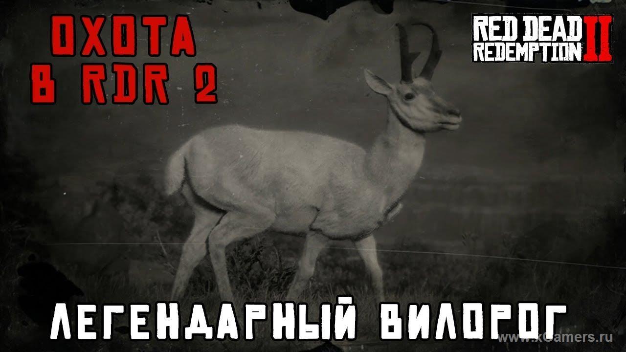 Легендарный вилорог в игре Red dead redemption 2