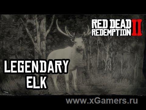 Легендарный олень в игре Red dead redemption 2