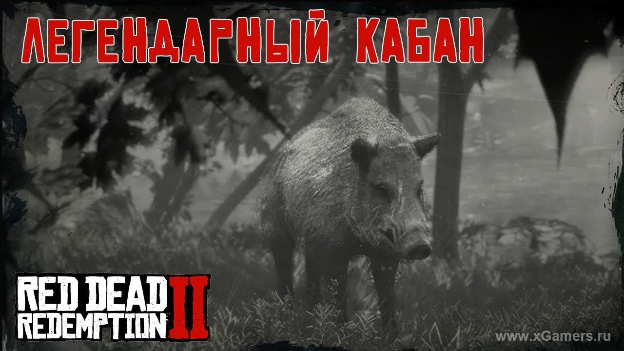 Легендарный кабан в игре Red dead redemption 2
