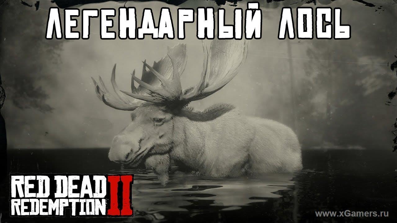 Легендарный лось в игре Red dead redemption 2