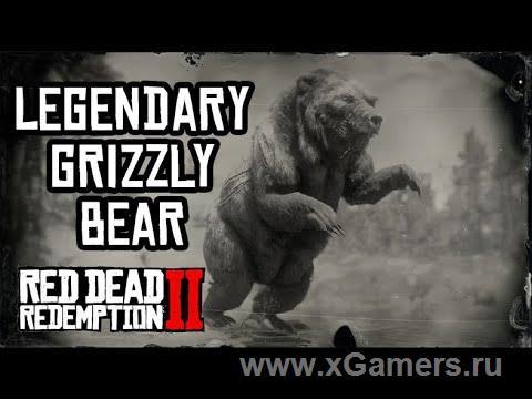 Легендарный гризли в игре Red dead redemption 2