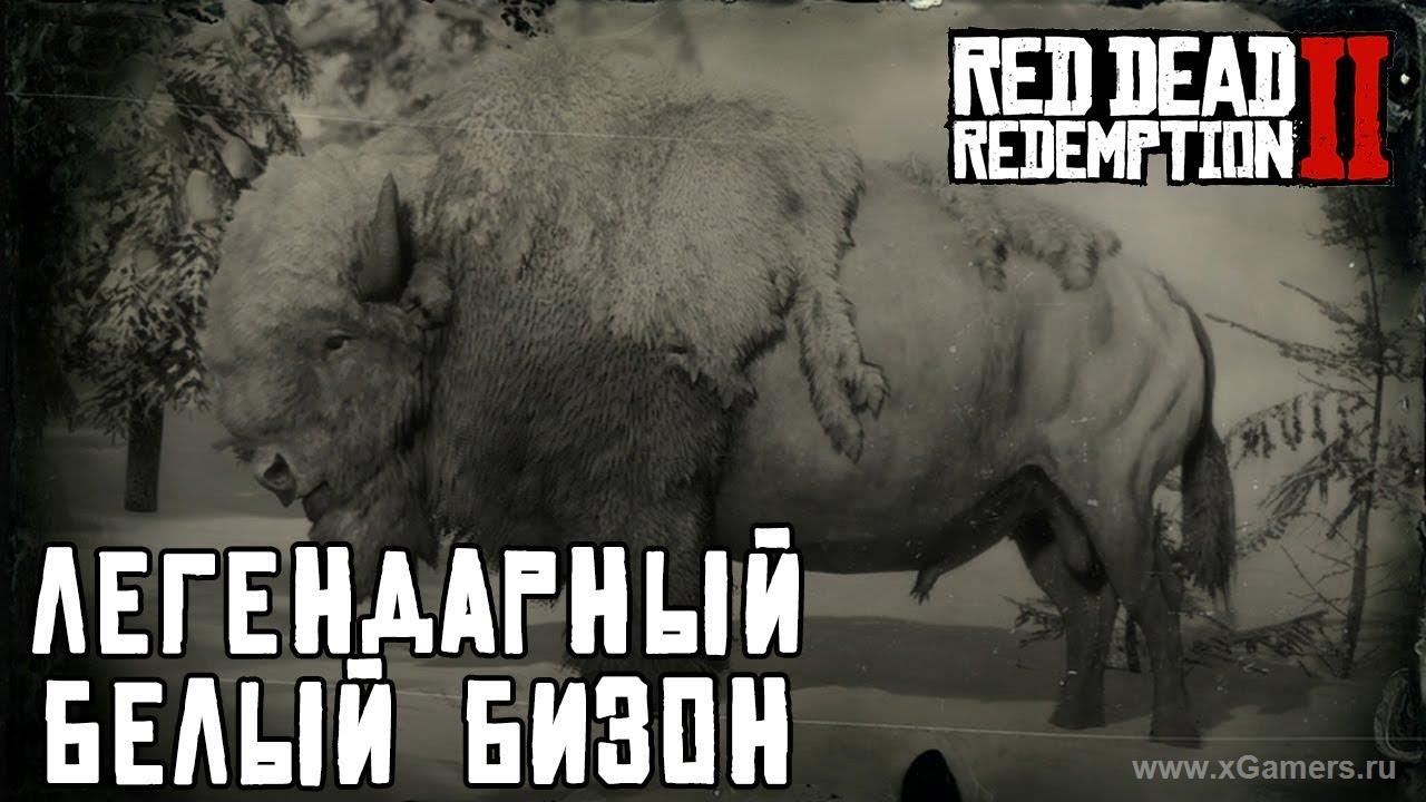 Легендарный бизон в игре Red dead redemption 2