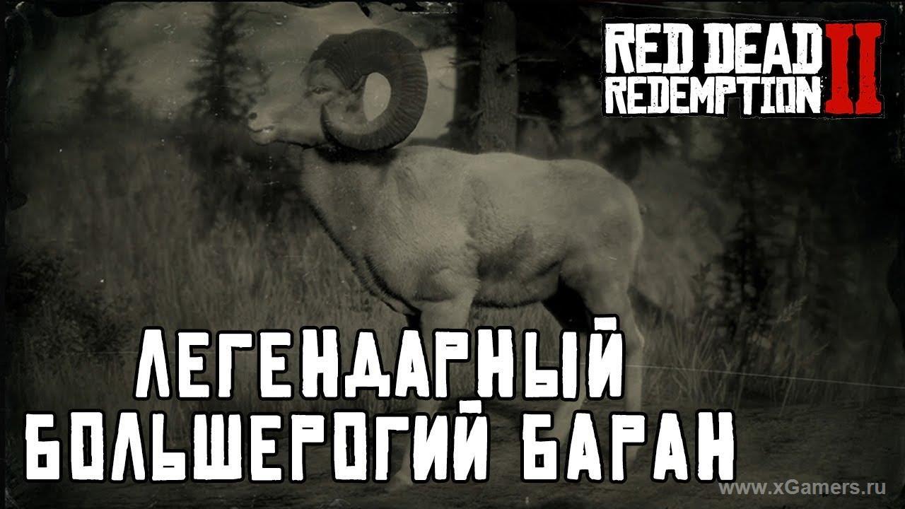Легендарный большерогий баран в игре Red dead redemption 2