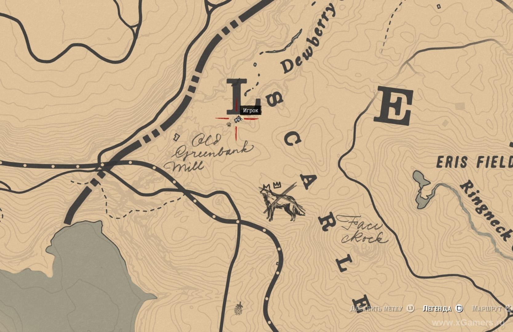 Отметка на карте где находится легендарный койот